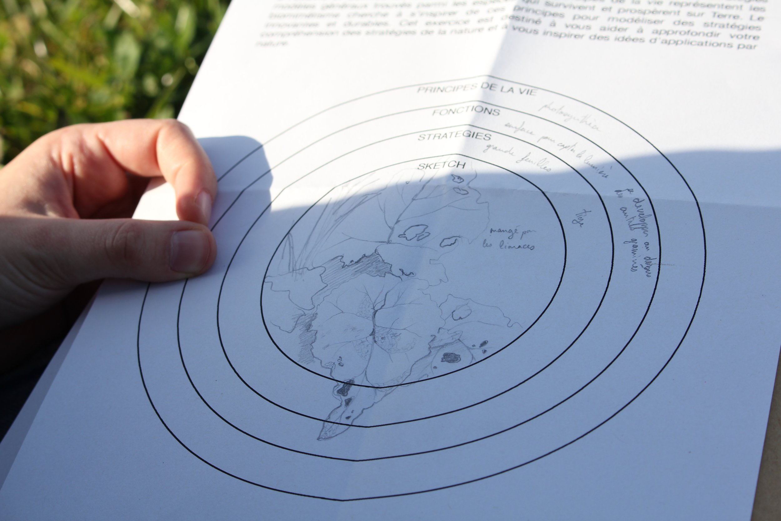 Design exercise around sketching