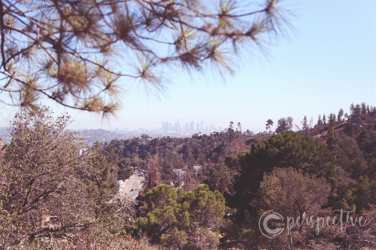 hollywood hills, downtown LA, ccmcafeeperspective