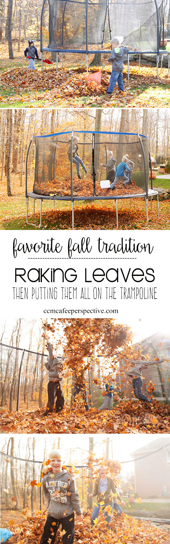 jumping in fall leaves