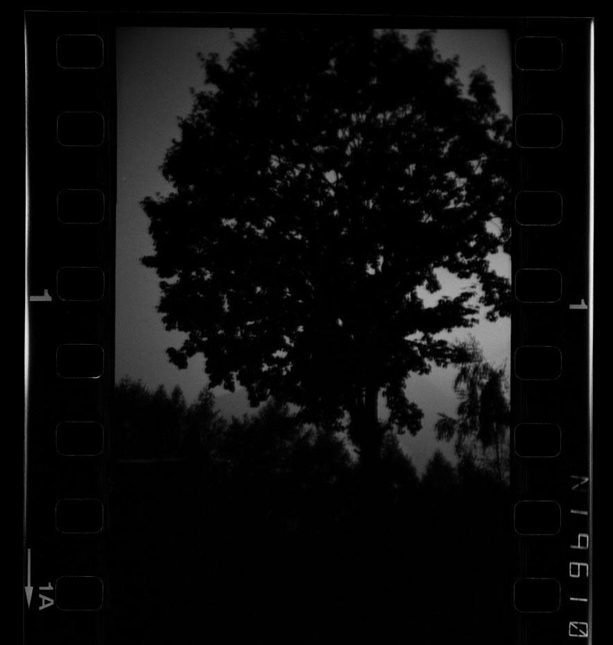 2017_Negativstreifen-Masken_-(3)xx.jpg