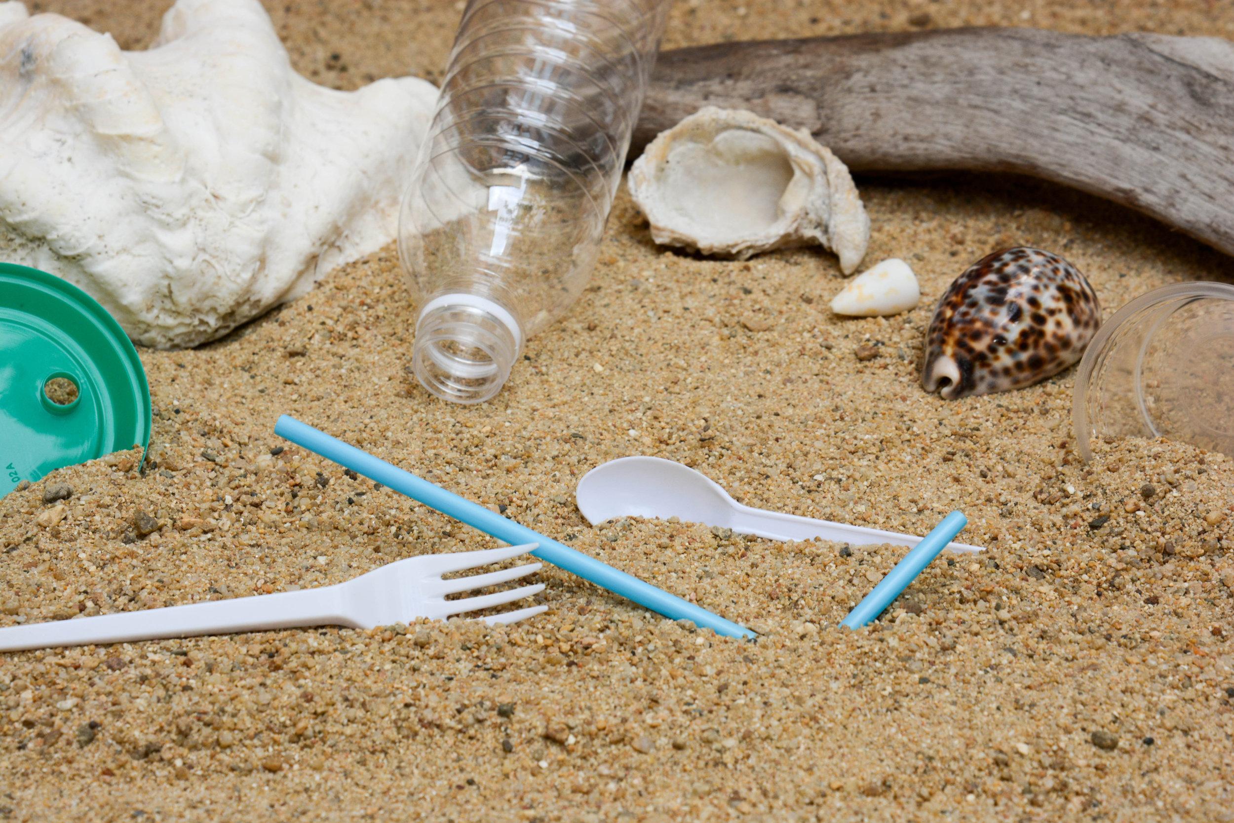 littered beach.jpg