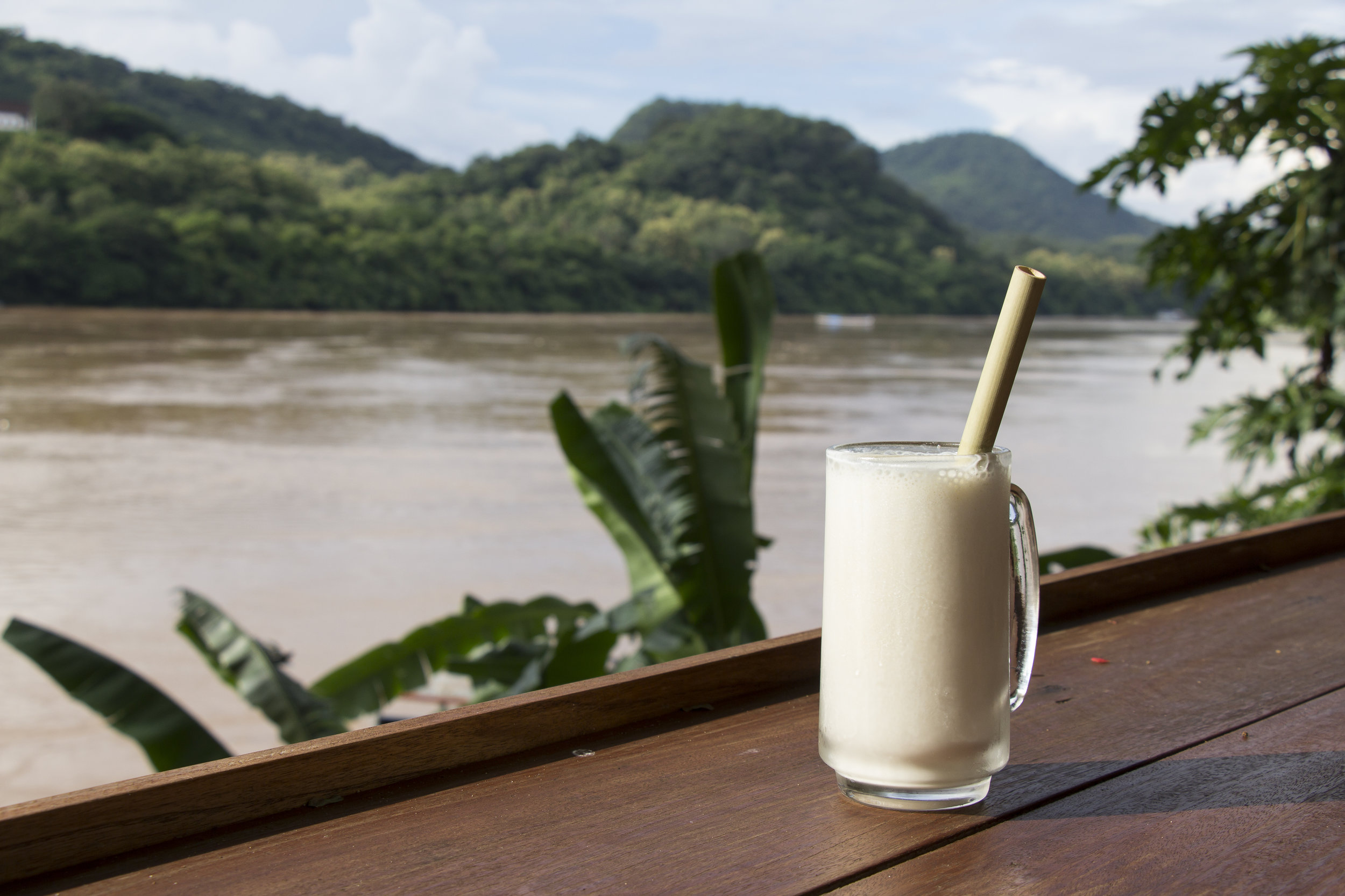 coconut straw drink.jpg