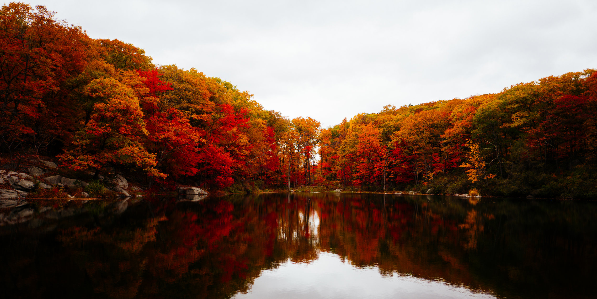 Photo Rhetoric - Black Rock Forest-1004.jpg