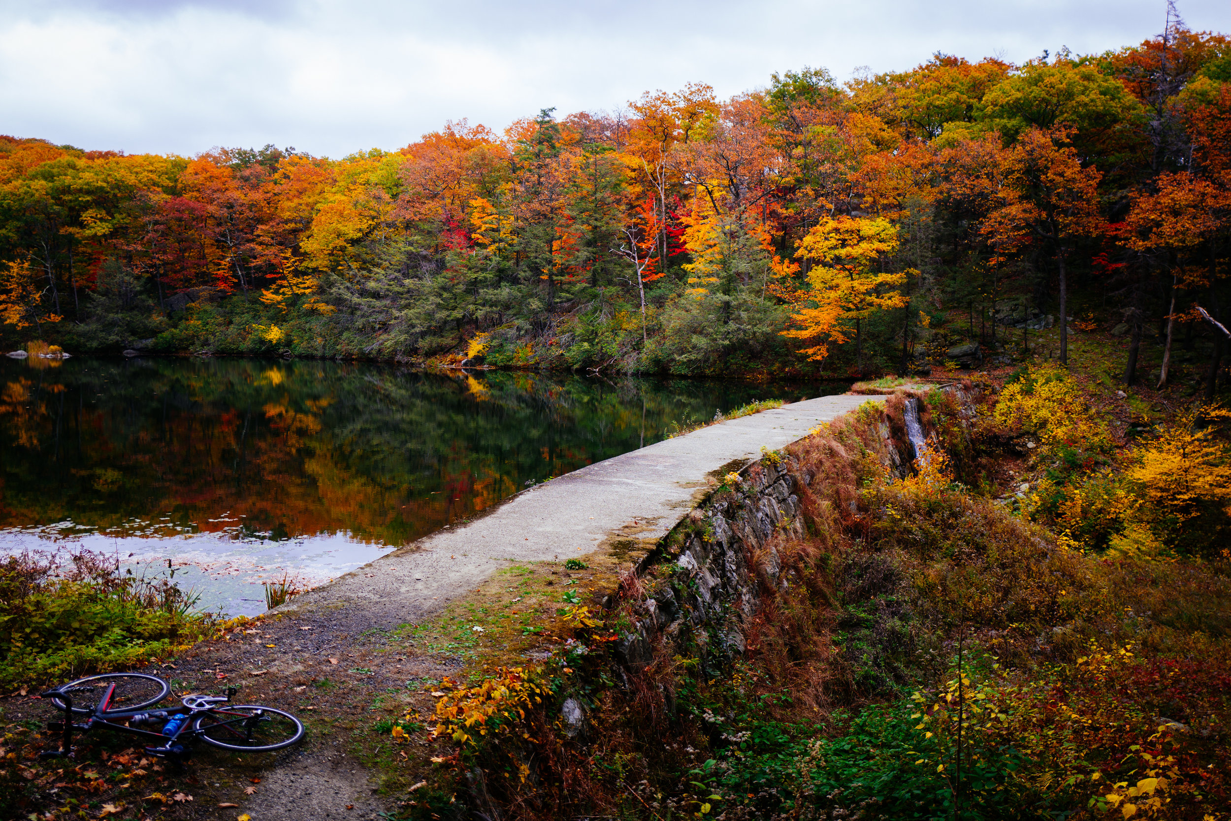 Photo Rhetoric - Black Rock Forest-1007.jpg