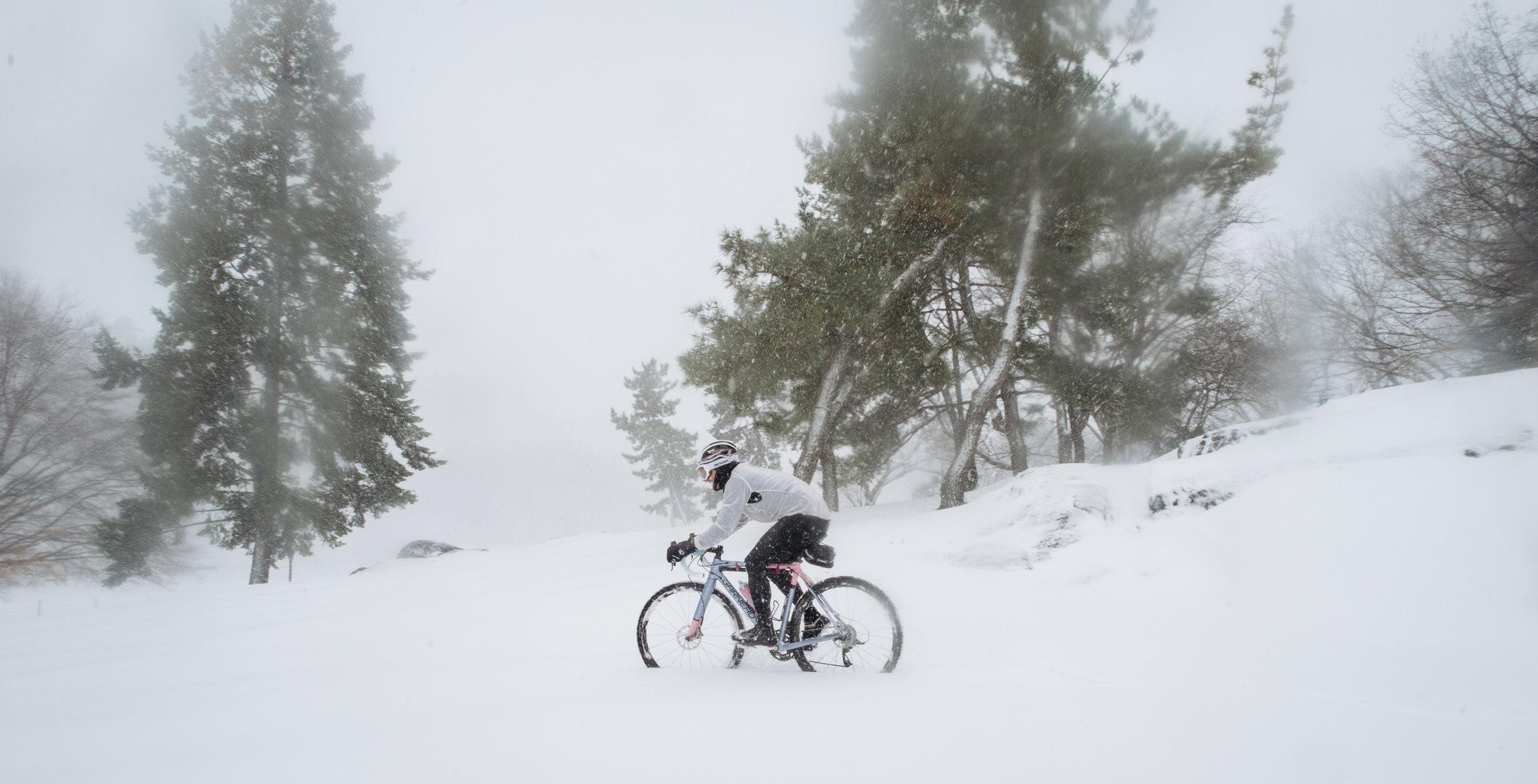 Photo Rhetoric - Central Park Snow Ride-1011.jpg