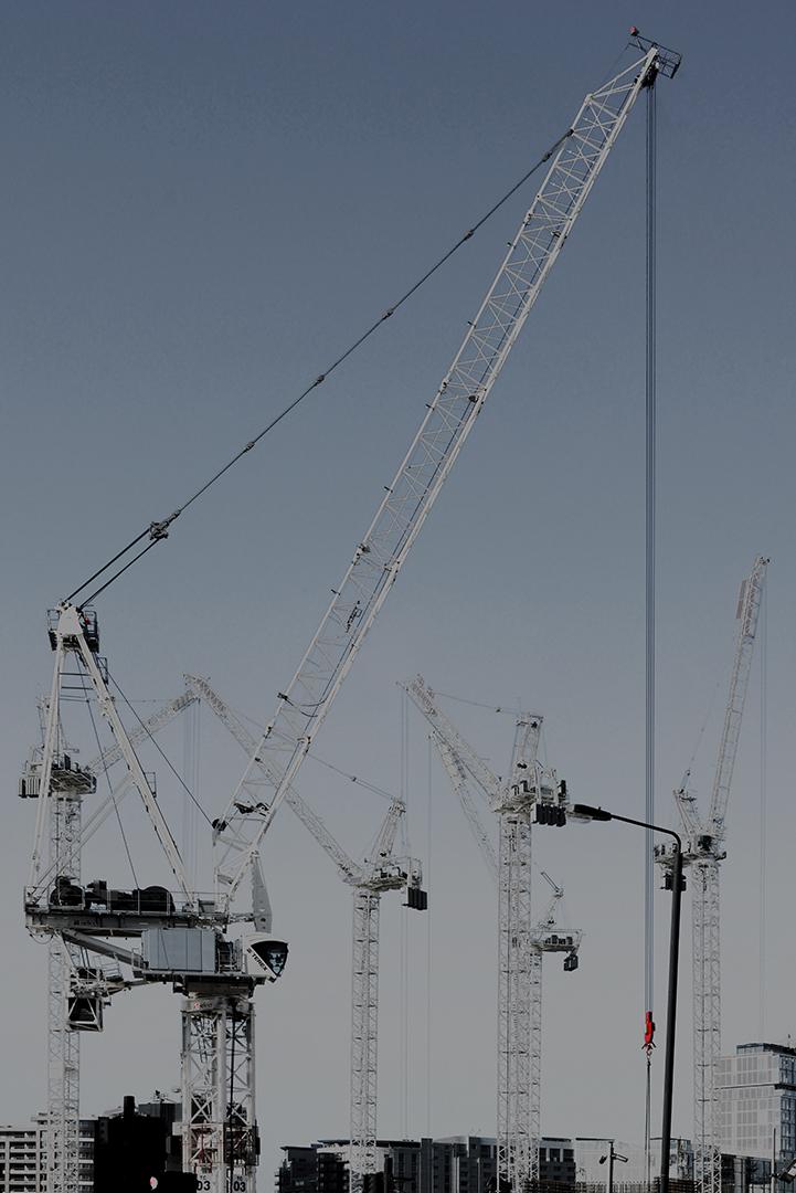 Cranes_3.jpg