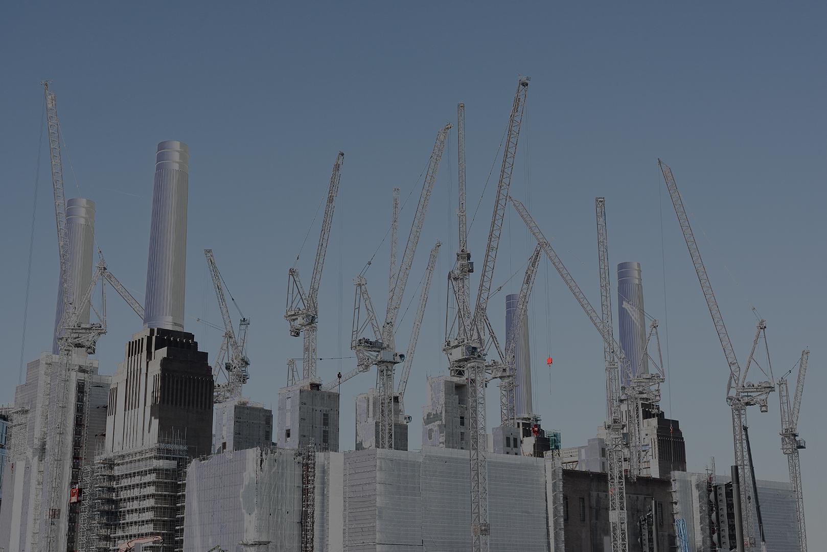 Cranes_4.jpg