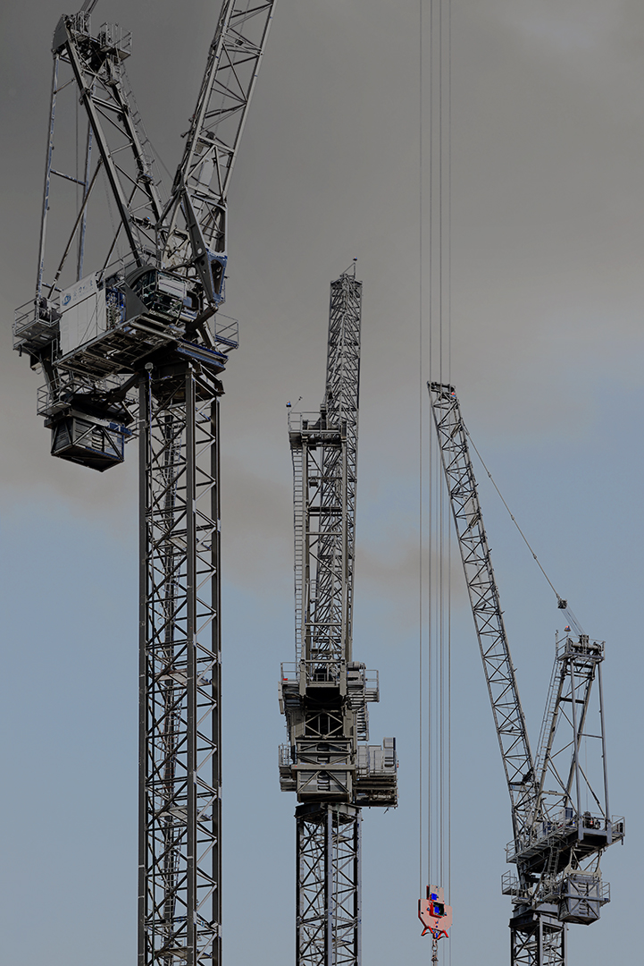 Cranes_5.jpg