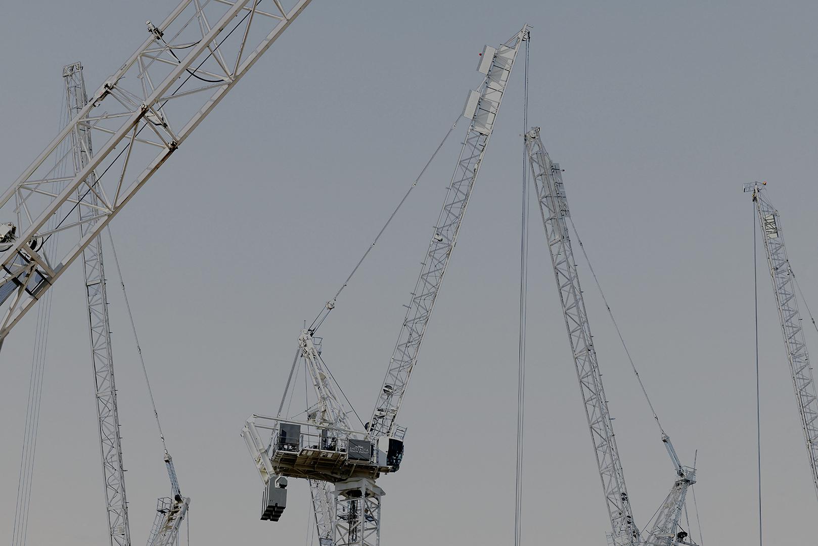 Cranes_6.jpg