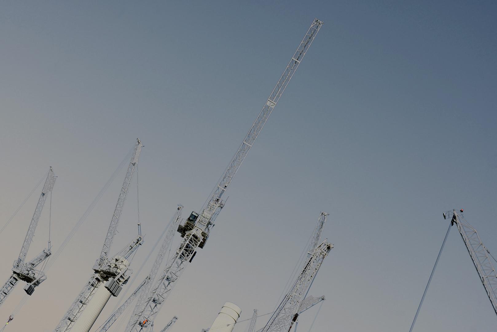 Cranes_7.jpg