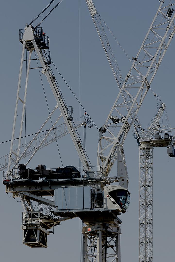 Cranes_9.jpg