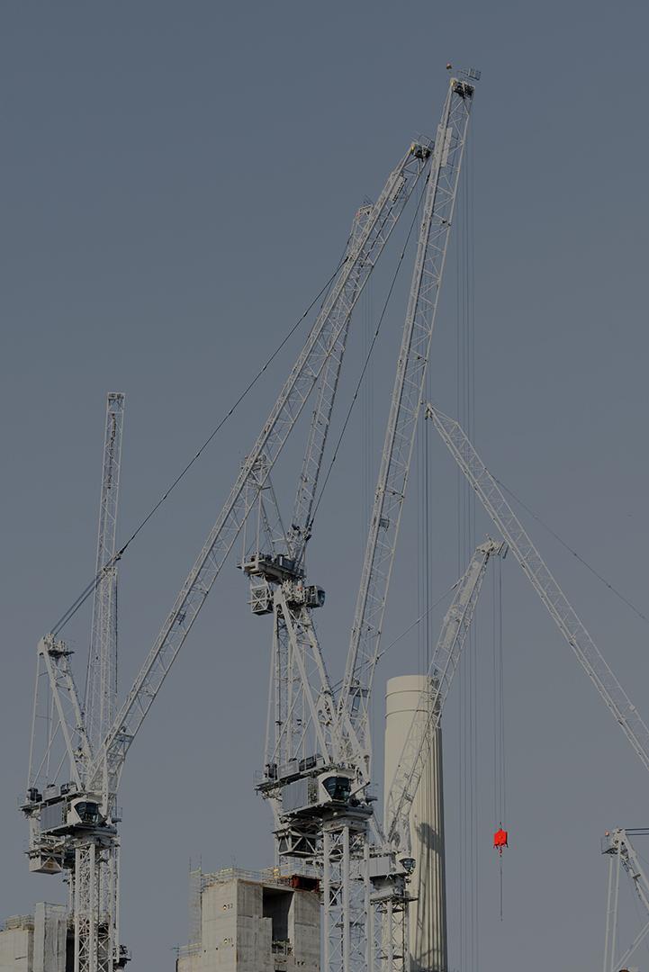 Cranes_10.jpg