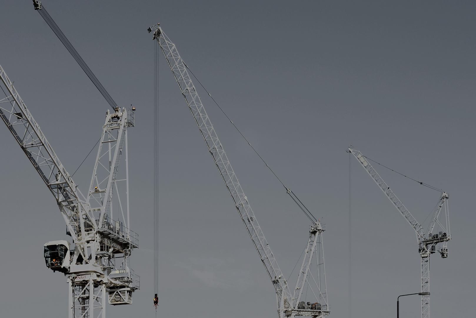 Cranes_11.jpg