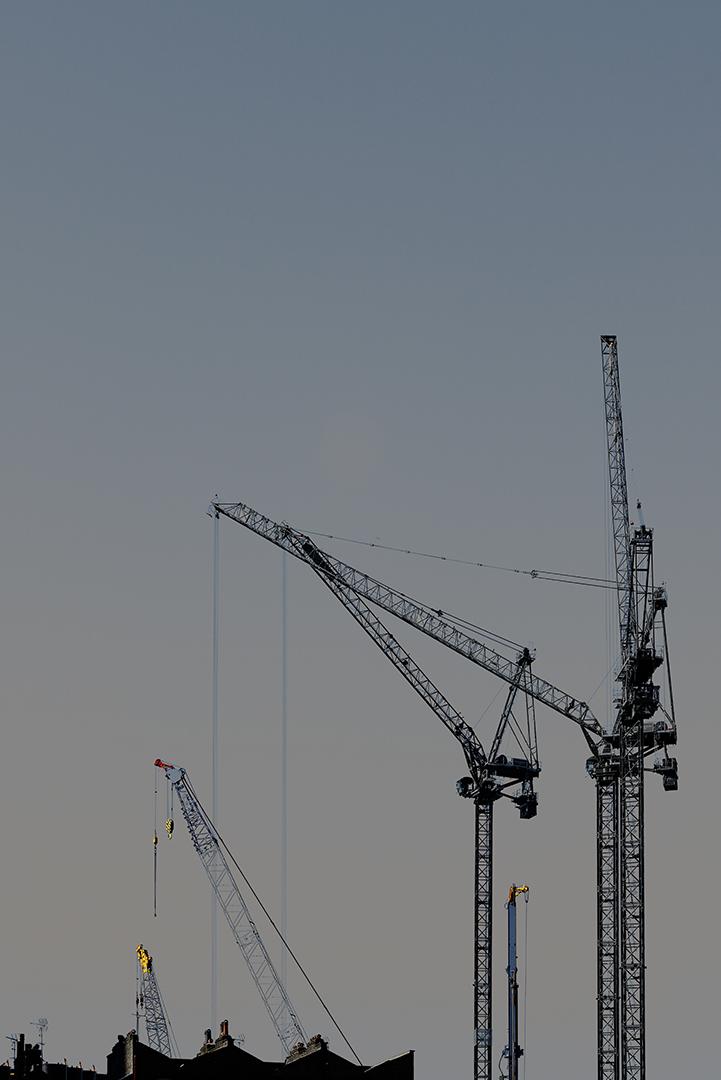 Cranes_12.jpg