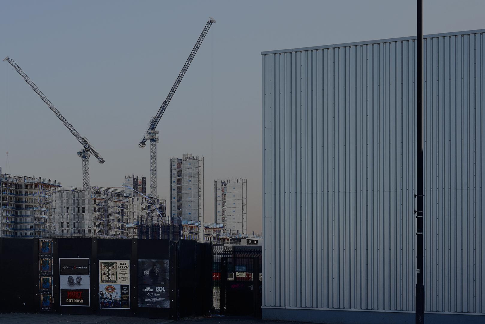 Cranes_15.jpg