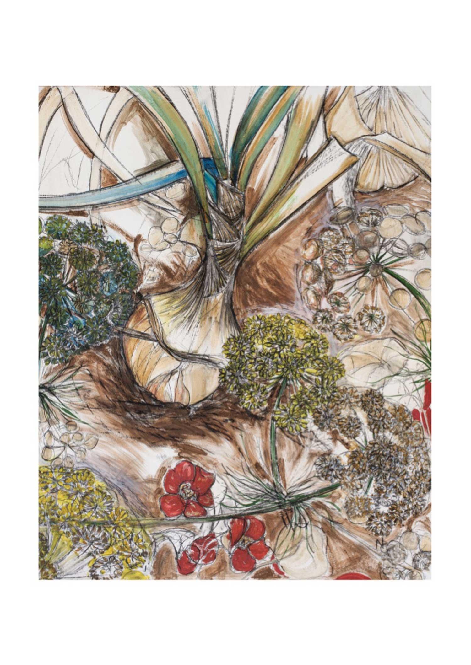 natasha-clutterbuck---giant-fennel-&-onions.jpg