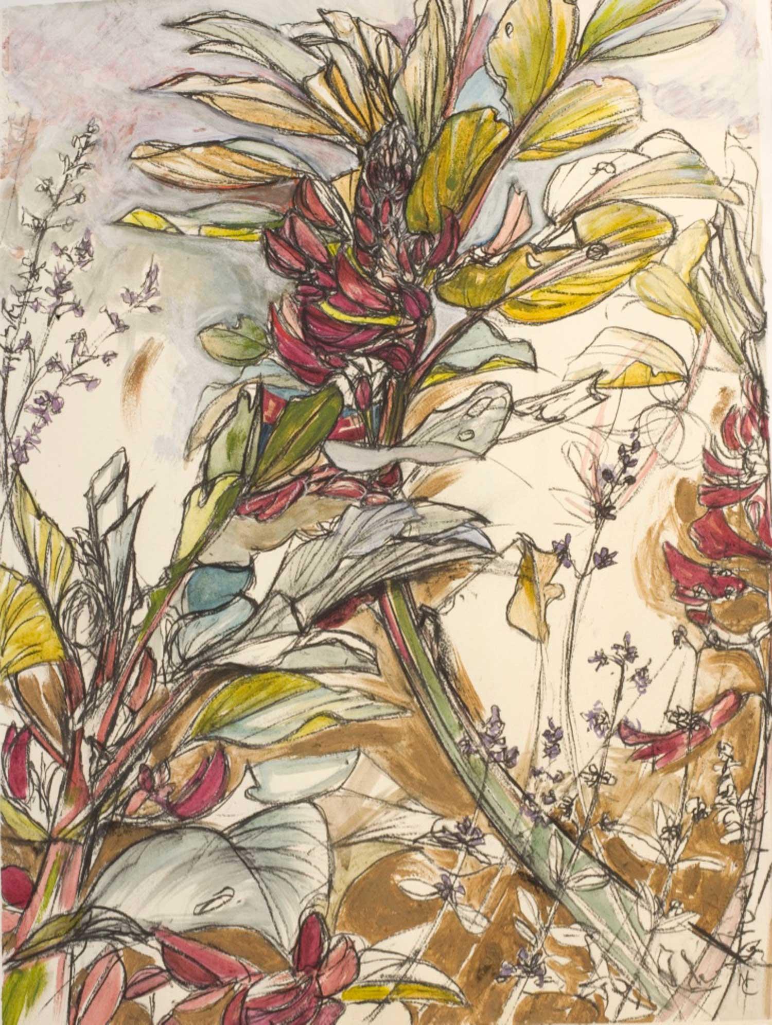 natasha-clutterbuck---crimson-flowered-broad-bean.jpg