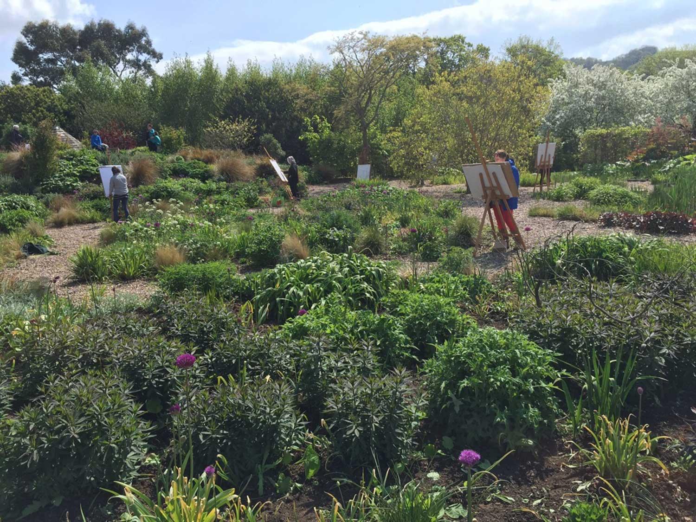 yeo-valley-organic-garden.jpg