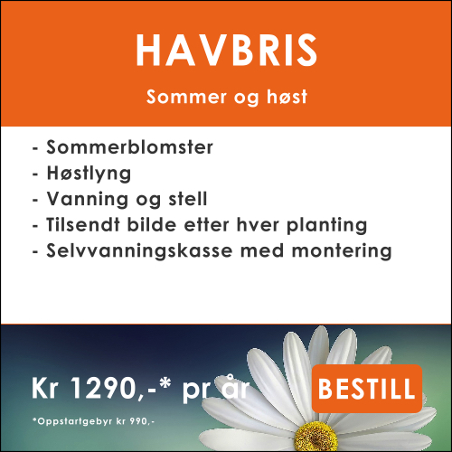 HAVBRIS.jpg