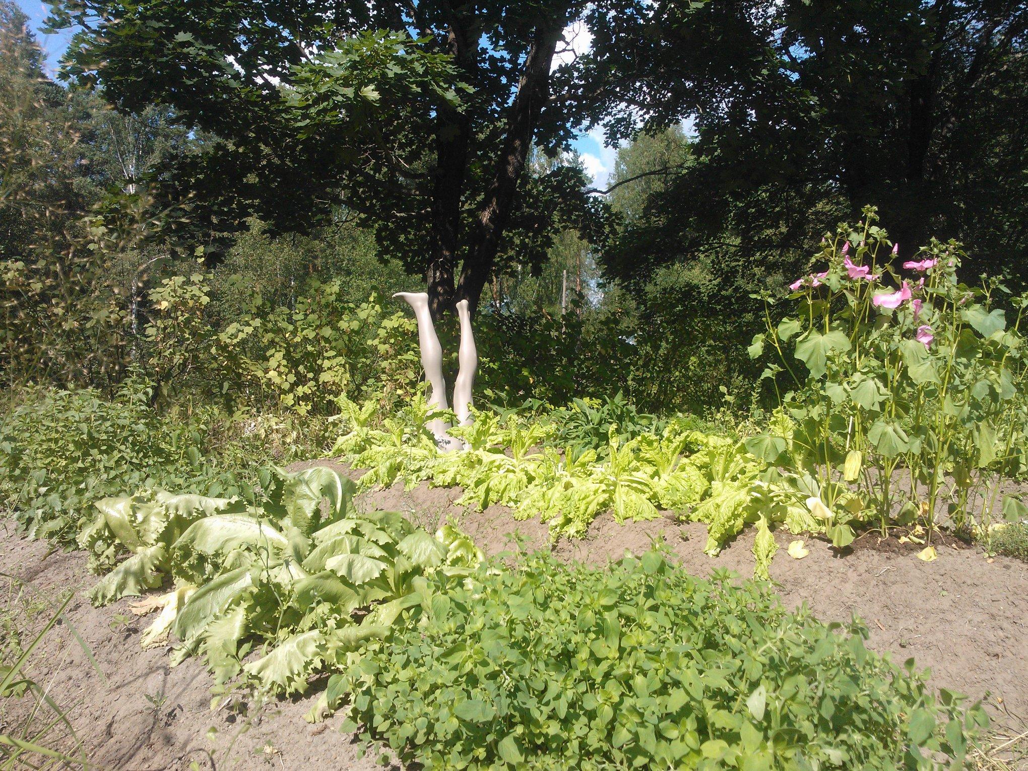 puutarhailua.jpg
