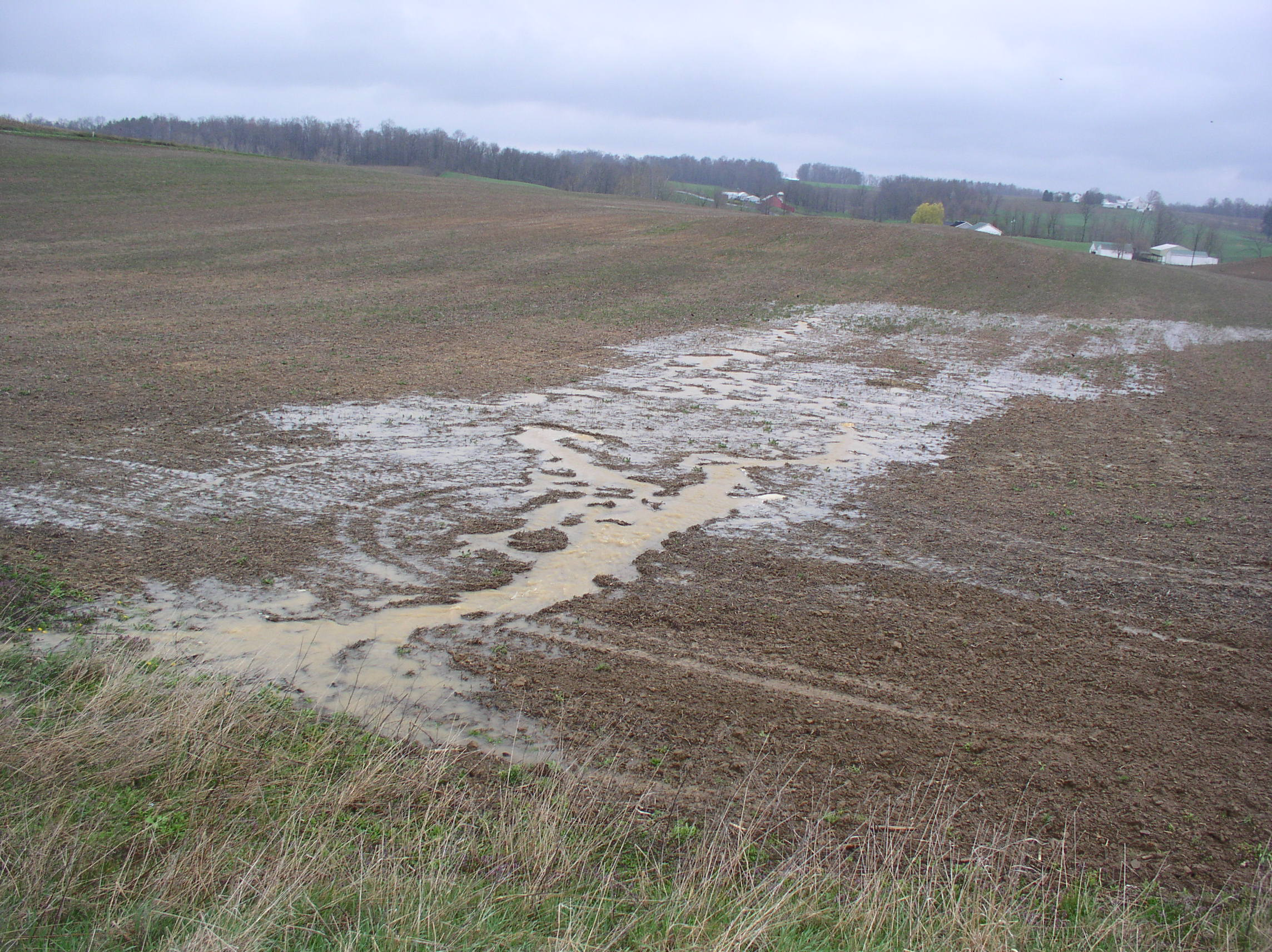 In this all-too-common example, topsoil is being lost from Holmes County farm fields.