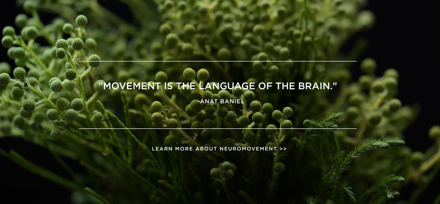 Anat Baniel Method Nashville TN