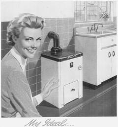 Consumer joy, 1955