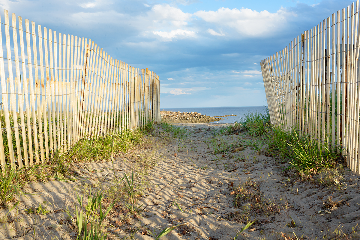 Dune Walk, Connecticut, 2016