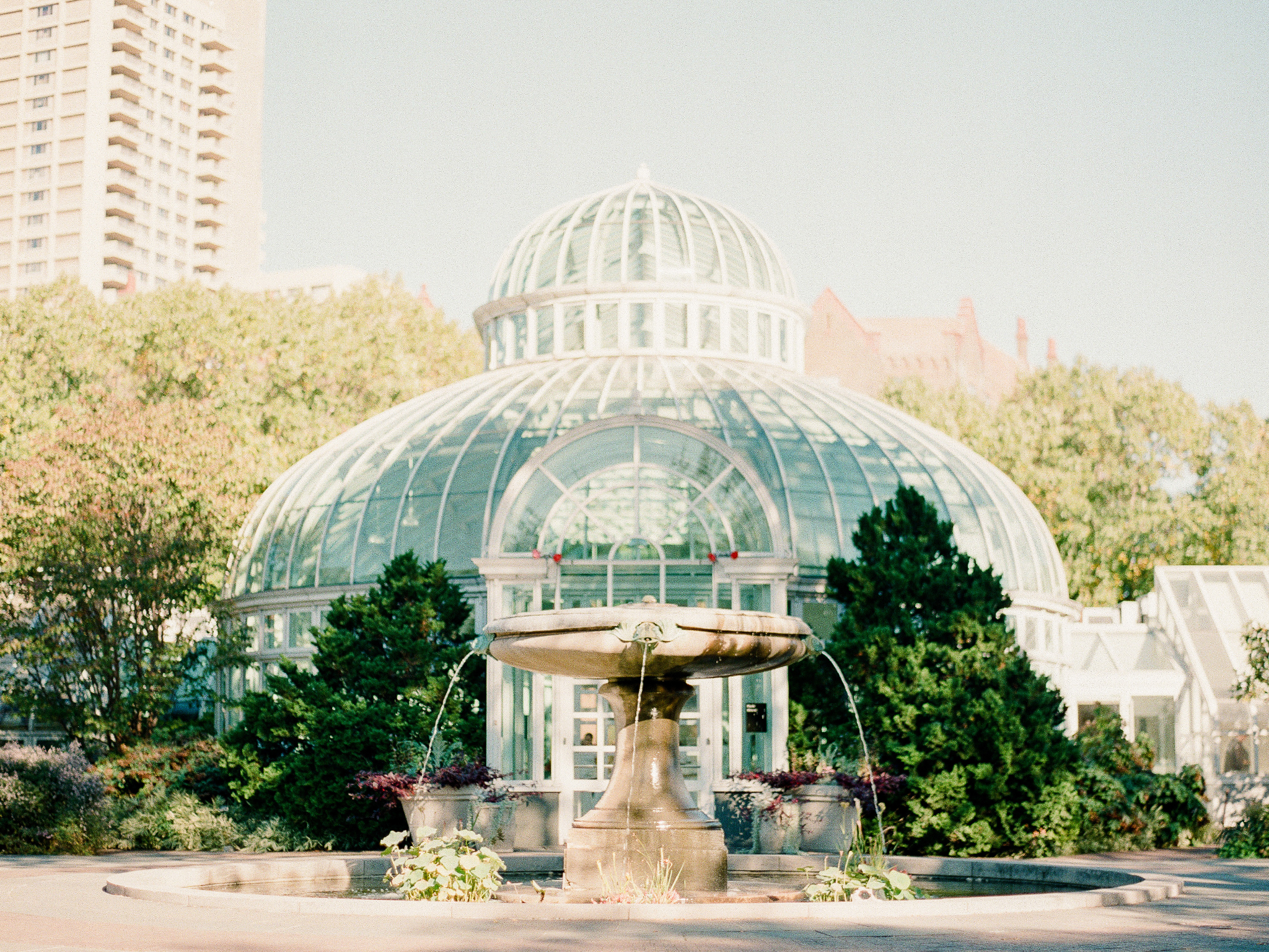 Brooklyn-Botanic-Garden-Wedding-Photos-The-Palm-House-04.JPG