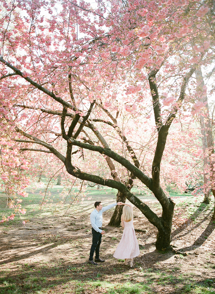 Couple Dancing under the Cherry Blossom Tress in Central Park, NYC