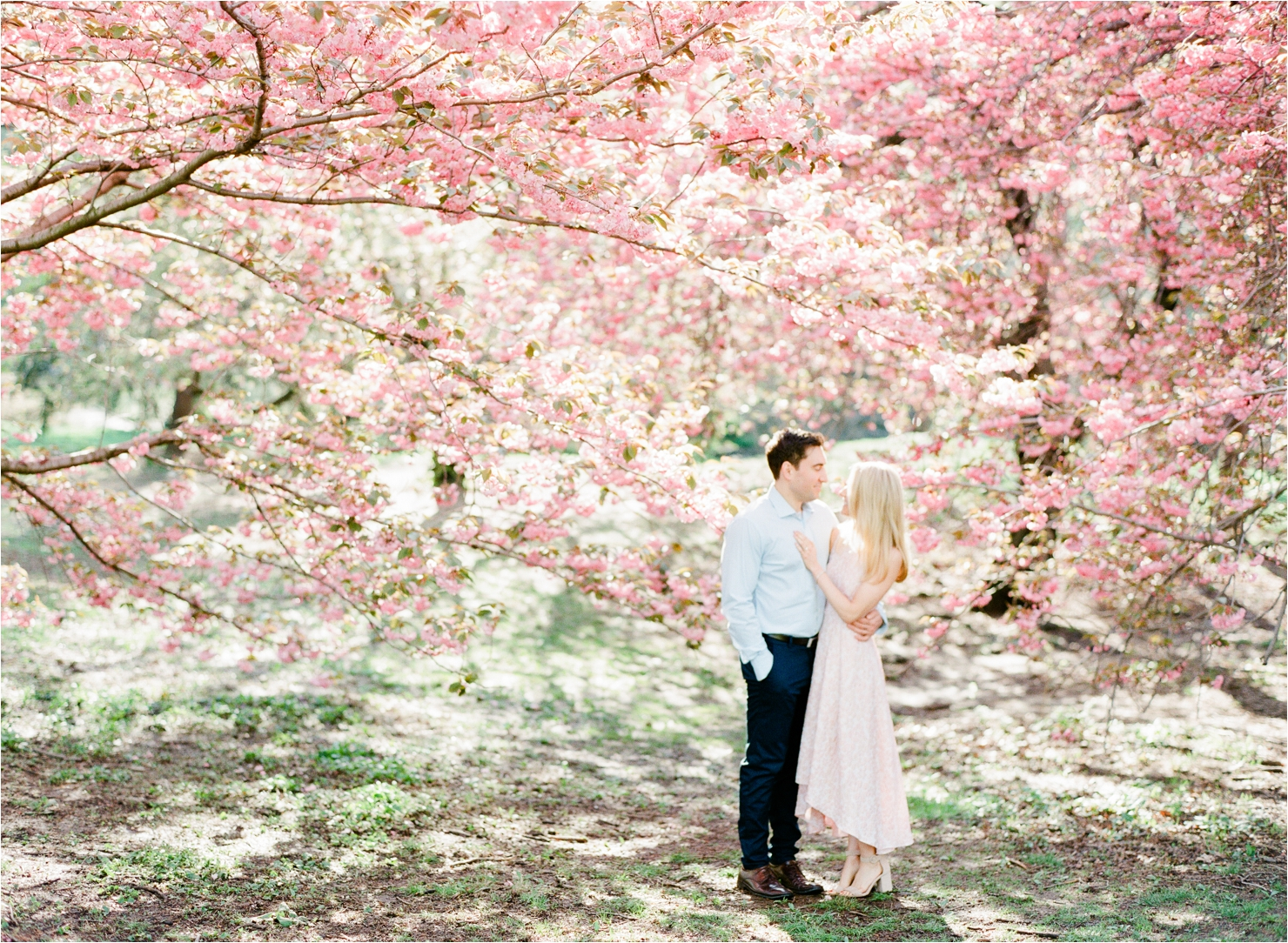 Spring Cherry Blossom Engagement Pictures in Central Park NYC