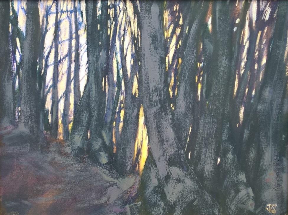 Daybreak wood - 44 x 59cm