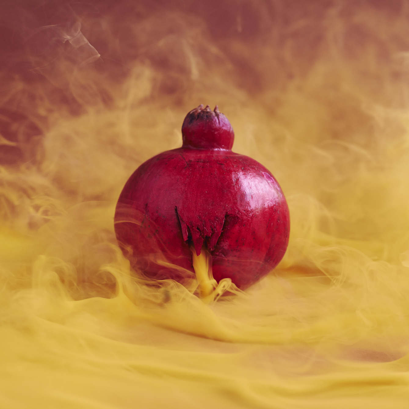 20-pomegranate_1340_c.jpg