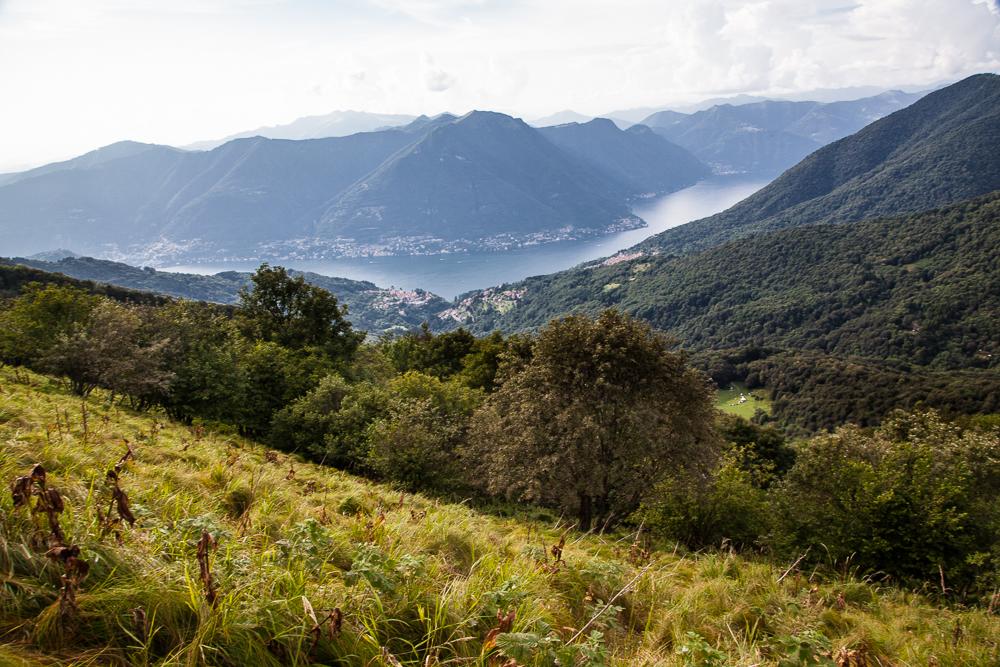 I prati vicini al Lago di Como dove vengono raccolte le erbe per creare il Gin RIvo