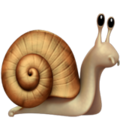 snail_1f40c.png