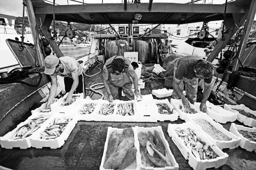Raccontare la filiera e la storia dei nostri mari è un lavoro prezioso e proprio oggi se ne percepisce l'urgenza.