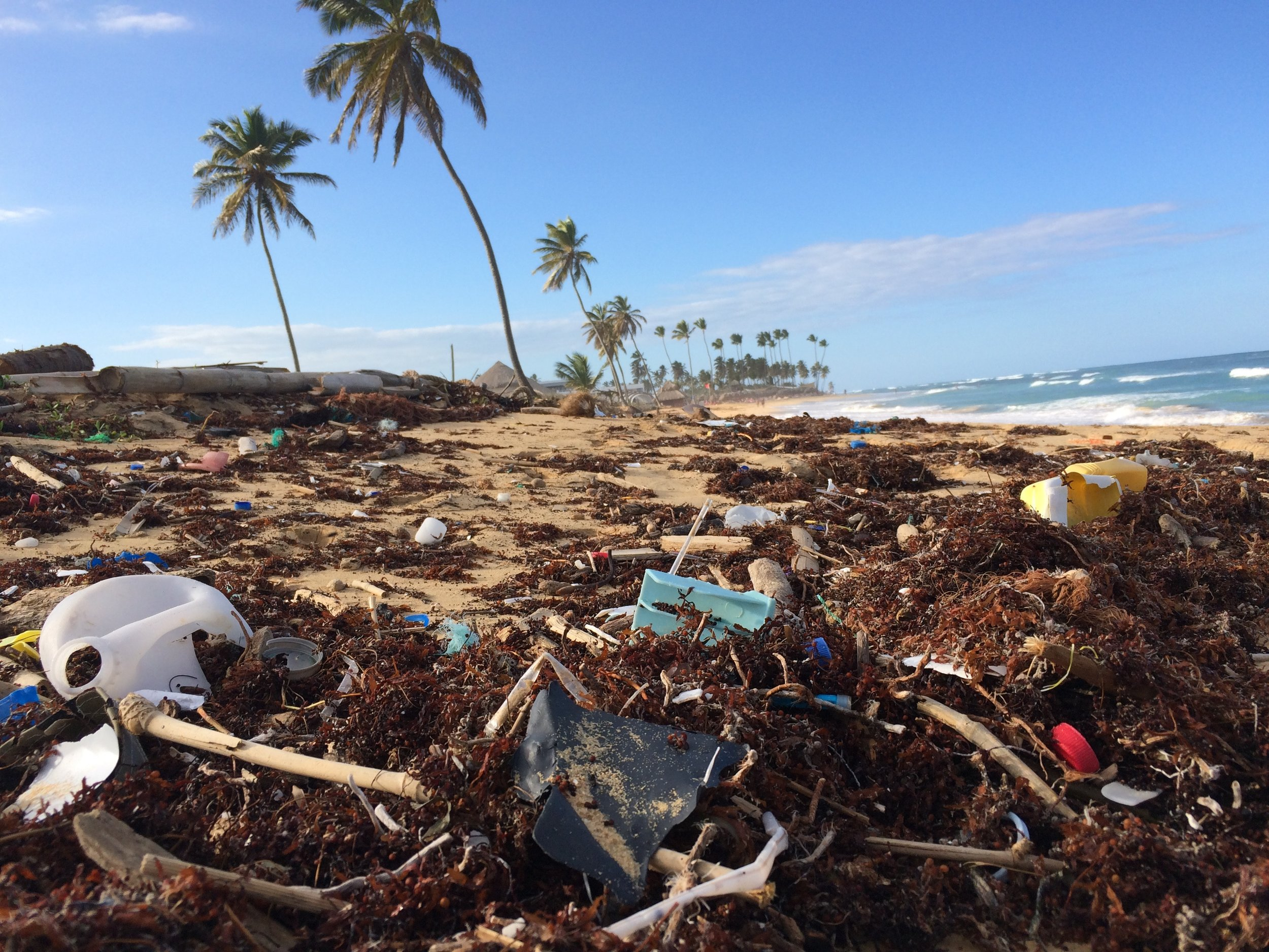 Una spiaggia di Punta Cana, Repubblica Domenica, invasa da rifiuti di plastica portati dal mare. Foto di Dustan Woodhouse.