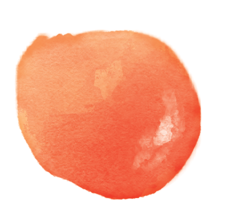 persimmon color study .png