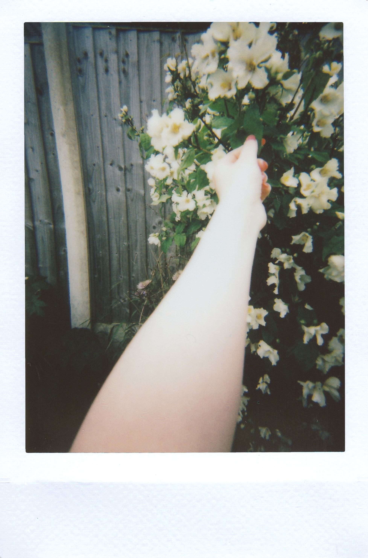 Photo  by  Lisa Fotios