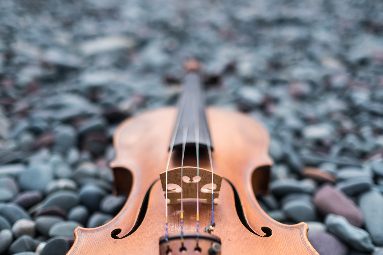 doug_violin1.jpg