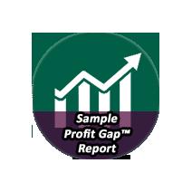 Sample Profit Gap™ Report