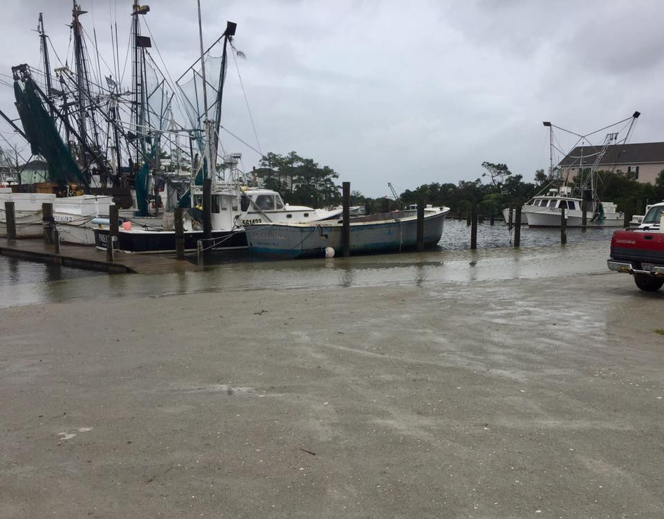 Harkers Island Harbor ~ Dean Johnson