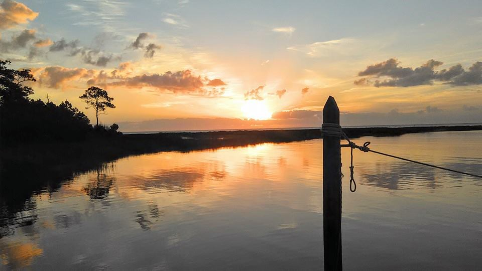 Cedar Island - Ricky Daniels