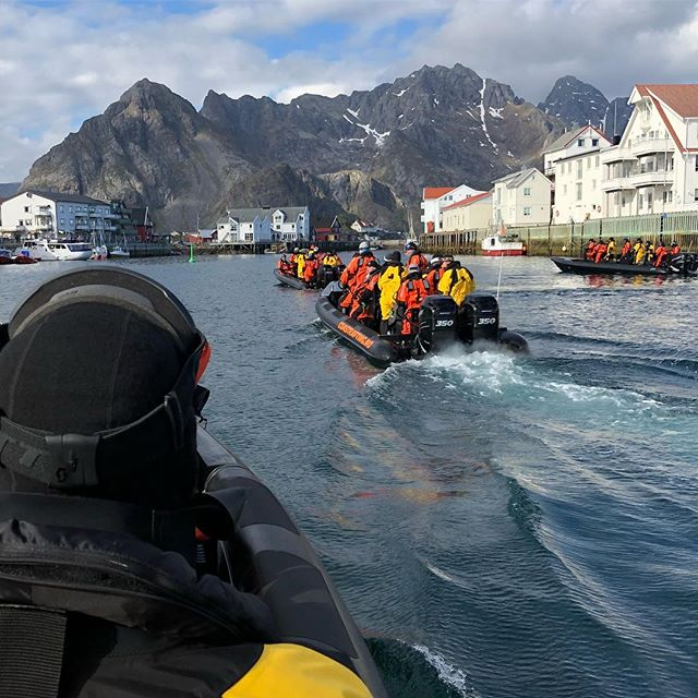«En ekte lofottorsk jeg er for jeg er født Henningsvær» #ziprace #torsk #henningsvær
