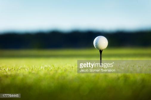 Photo by Jacob Sjoman Svensson/Folio Images / Getty Images
