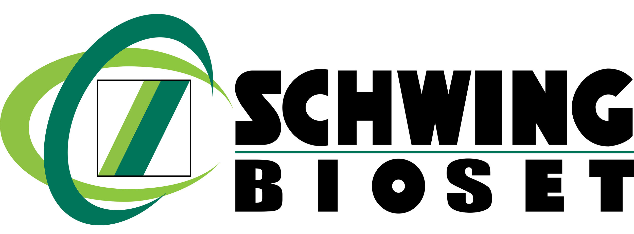LOGO - Schwing Bioset.jpg
