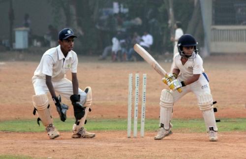cricket-166794_1920.jpg