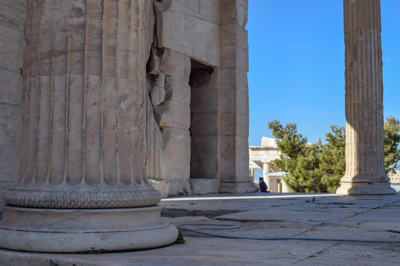 catatacropolis.jpg