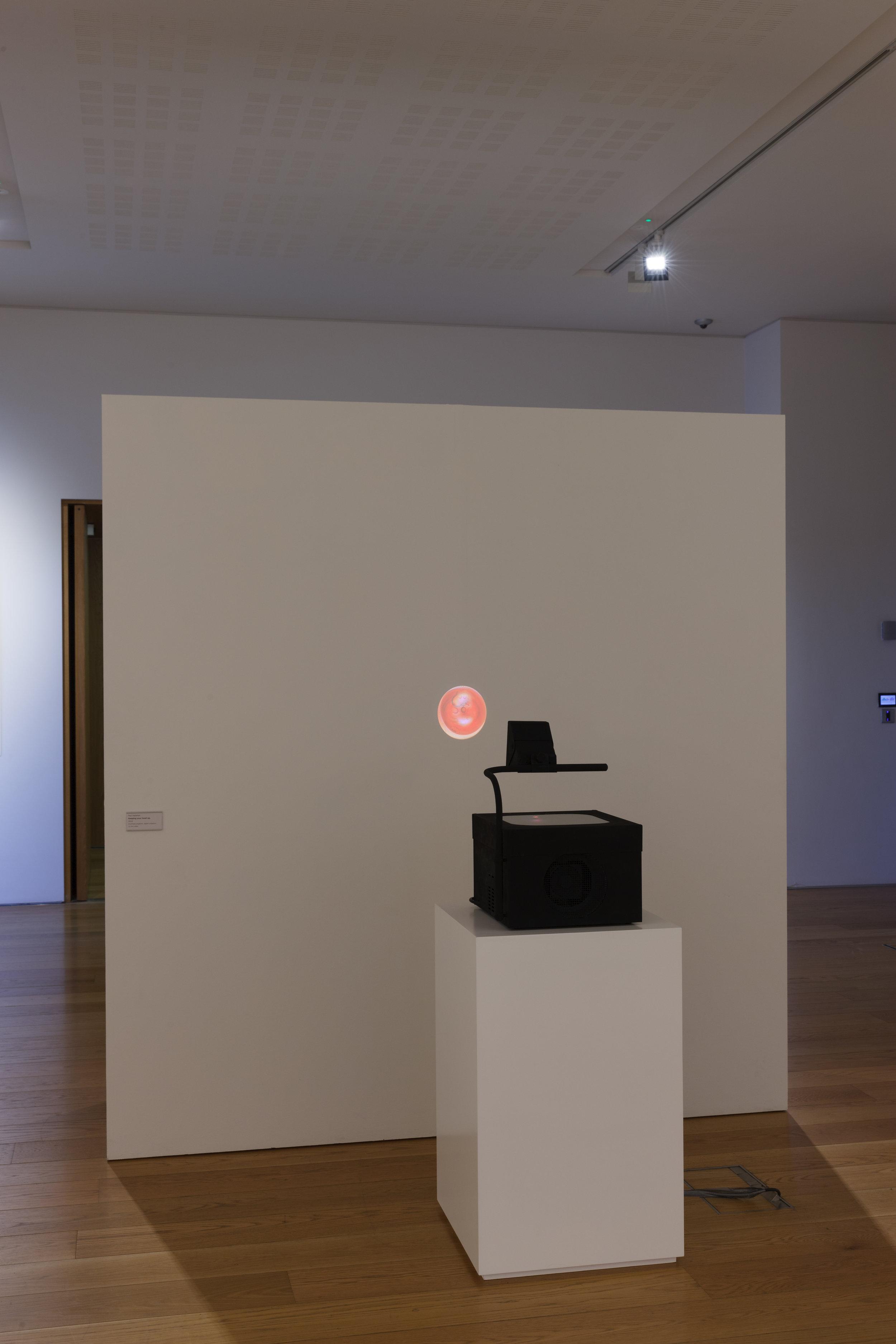 Keepimg your head up,  2019 36cm X 33cm X 48cm, digital video, overhead projector (10 mins)