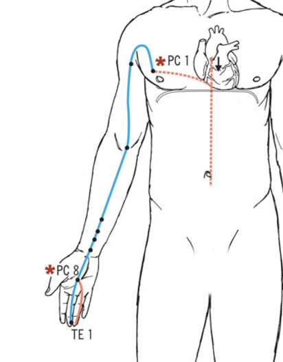 Outer and Inner Pathways of the Pericardium Meridian